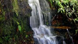 Cascada. Parque Natural Bogotá